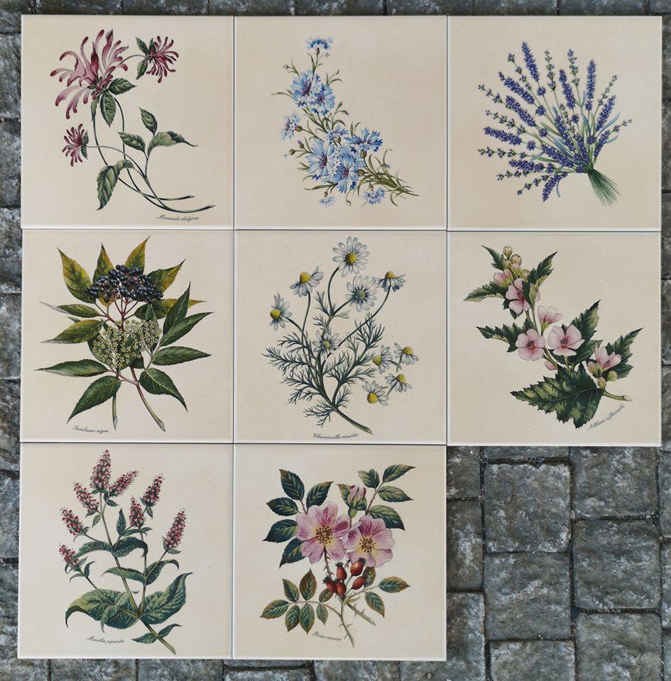 obklady kuchyně byliny květiny